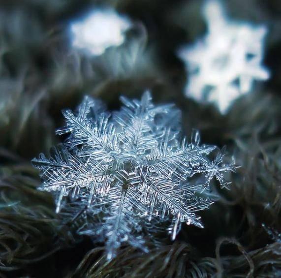 9年只拍一朵雪花,他用一部烂相机,把雪花拍出前所未见的美