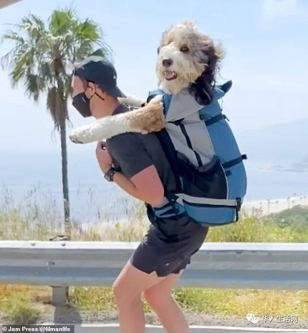 一人,一狗,一世界!