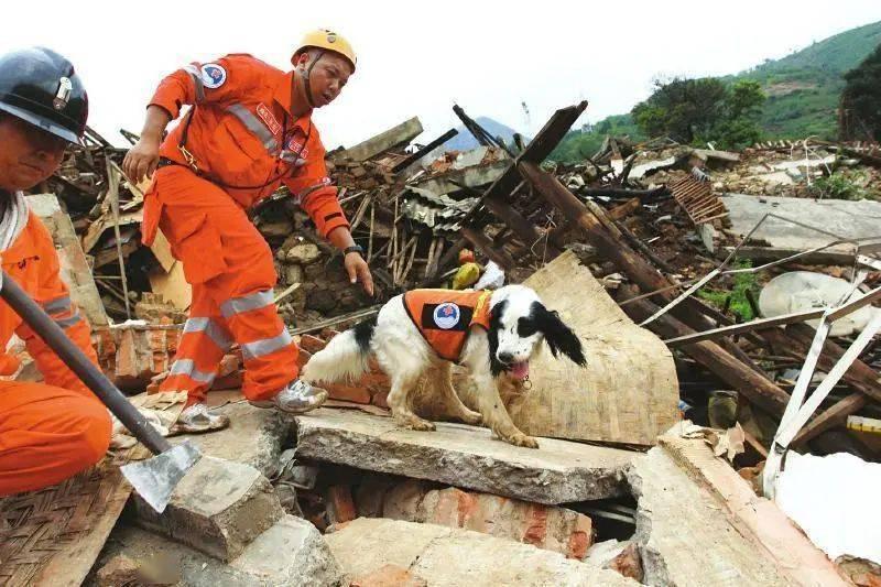 关于地震埋压 你了解多少?