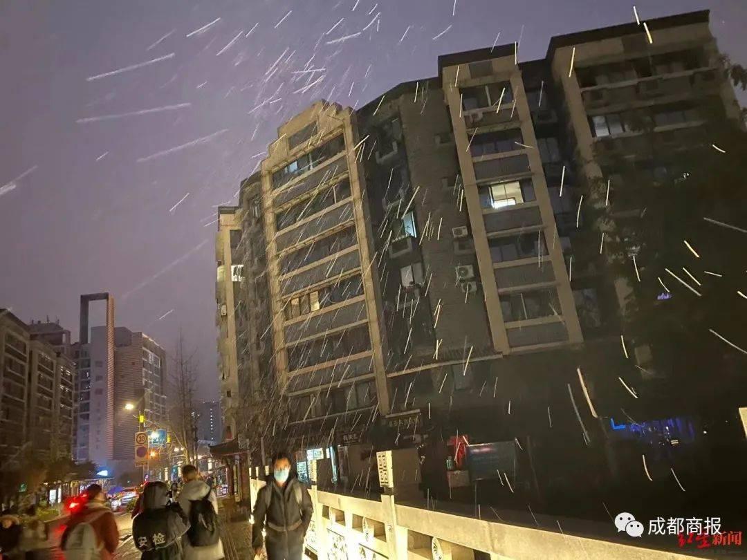 【1017丨身边】官宣!下雪了!下得很认真