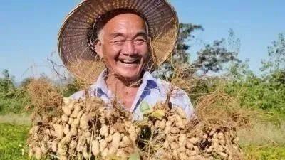 70后拒绝种地,80后不会种地,未来中国农村内的田地由谁种植?  第3张