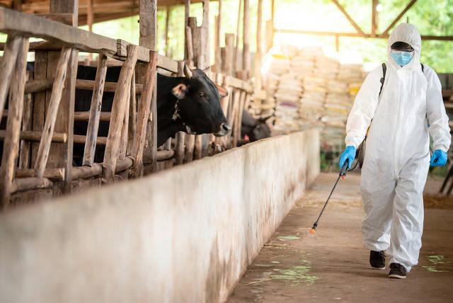 河北8天新增新冠感染354人,农村疫情形势为何严峻?