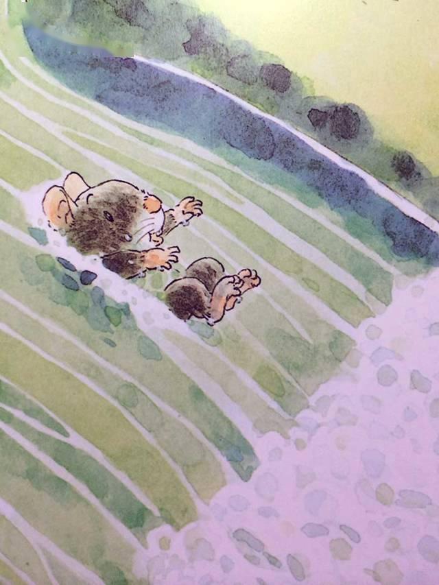 有声绘本:14只老鼠洗衣服  第11张