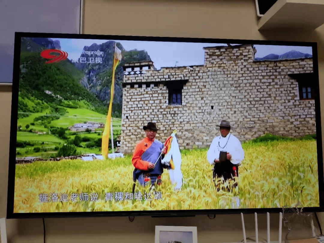 成都,藏区人民的第二首府|大象公会