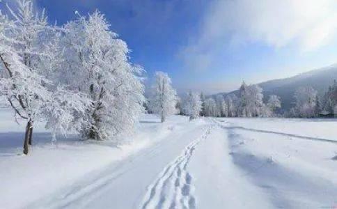 """第五届""""芙蓉杯""""全国文学大赛入围诗歌作品—《今天下雪了(外一首)》"""