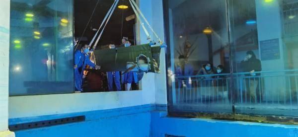 世界首例!3只海豚抗住50℃温差冰城安家