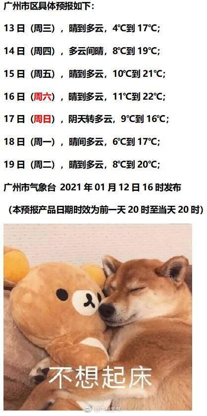 出太阳了但仍低温!广州最低温仍是4℃,出门记得保暖