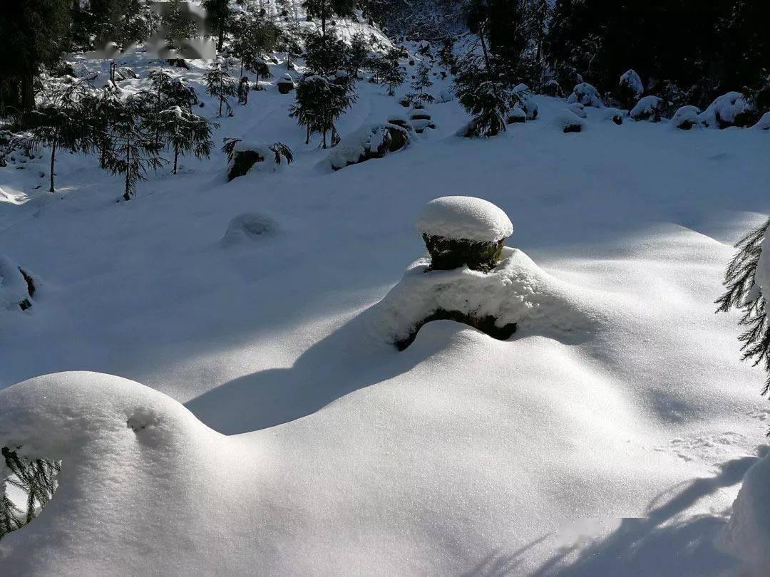适合遛娃的小众耍雪地!0徒步开车直达,云海日出、雪山星空一键全收!