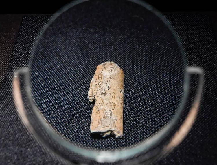 商代先民的日子是什么样?三峡博物馆这些甲骨文告诉你