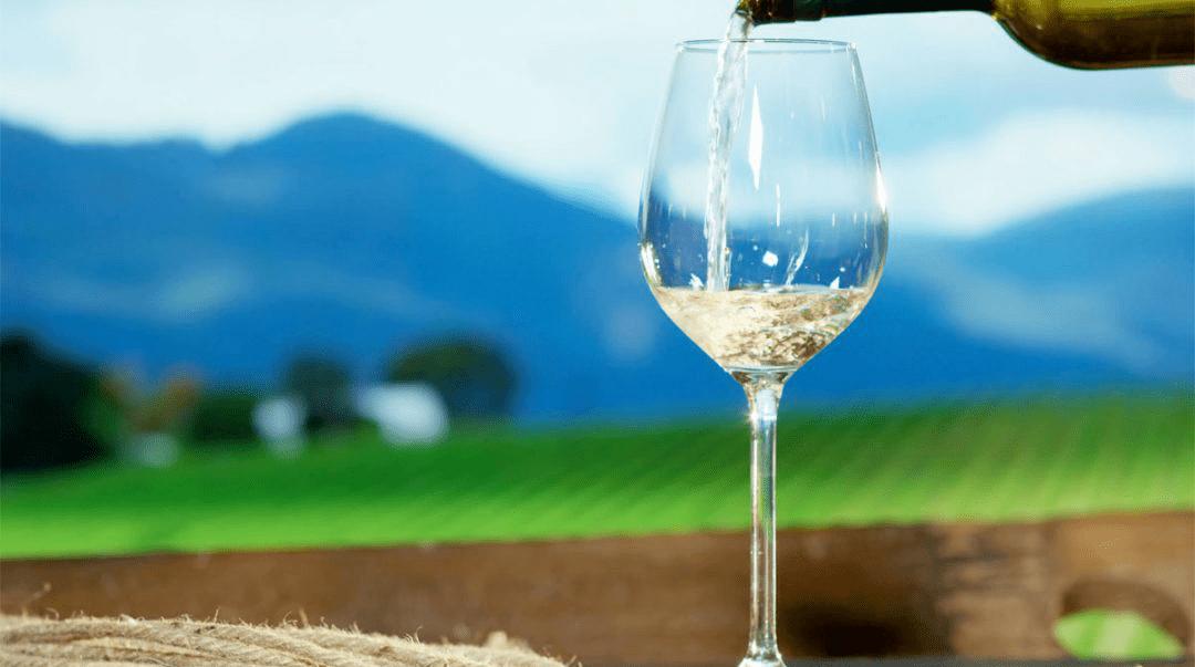 阿布鲁佐大区白葡萄酒