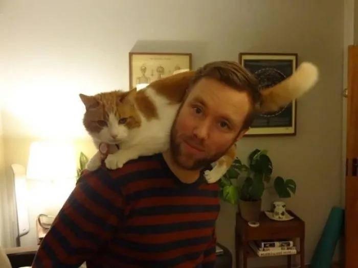 失踪13年之后,我的猫终于找到了回家的路