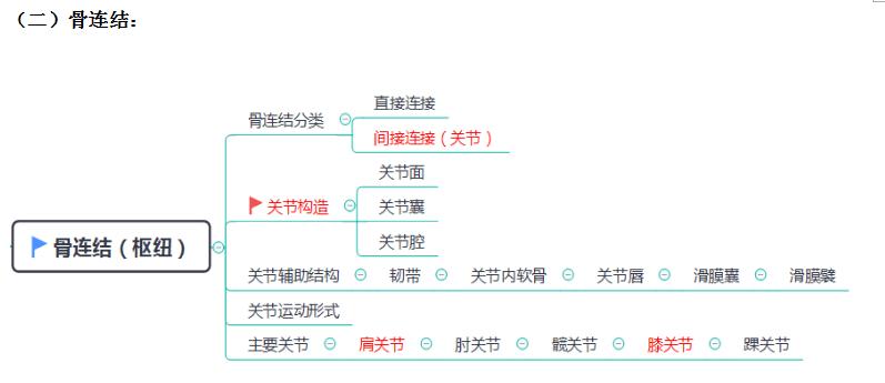 运动系统由哪三部分组成(运动系统思维导图)