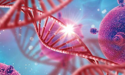 乙肝在研新药治疗性寡核苷酸 调节敏感分子靶点 慢性肝病新策略