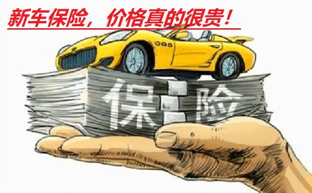 新车第一年保险多少钱(新车保险的猫腻你真的知道吗)插图(1)