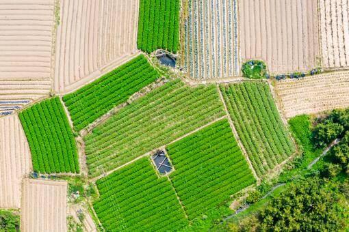 农业补贴找什么部门(地力保护补贴是什么意思)插图(1)