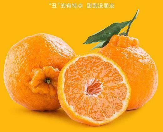 丑橘吃多了会怎样(丑橘真的吃了不上火吗)插图(4)