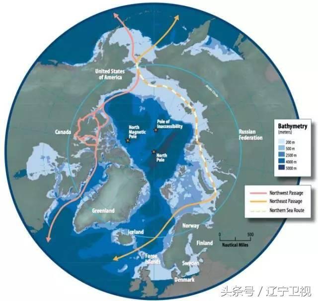 北极为什么没有企鹅?(北极熊为什么不吃企鹅宝宝呢)插图(6)