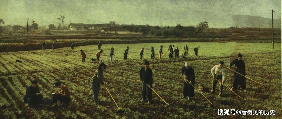 老照片 1961年湖南人民公社 生产生活满堂红