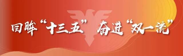 浙江大学发布2020届毕业生就业质量报告