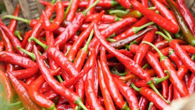 它是湖南吃辣椒最猛的一个县,以辣椒为家常菜,辣味高达七种以上