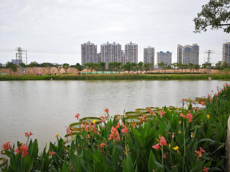 桂平2019年经济总量_2021年介绍桂平的图片