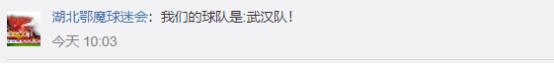 """卓尔正式更名""""武汉队""""!球迷:感谢投资人对这座城市的支持!"""