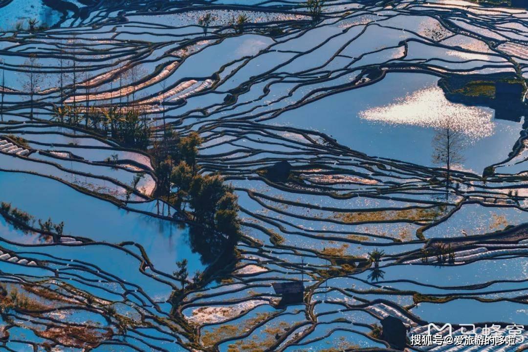 这是云南不可错过的宝藏!惊艳世界的大地曲线,2月迎来颜值巅峰