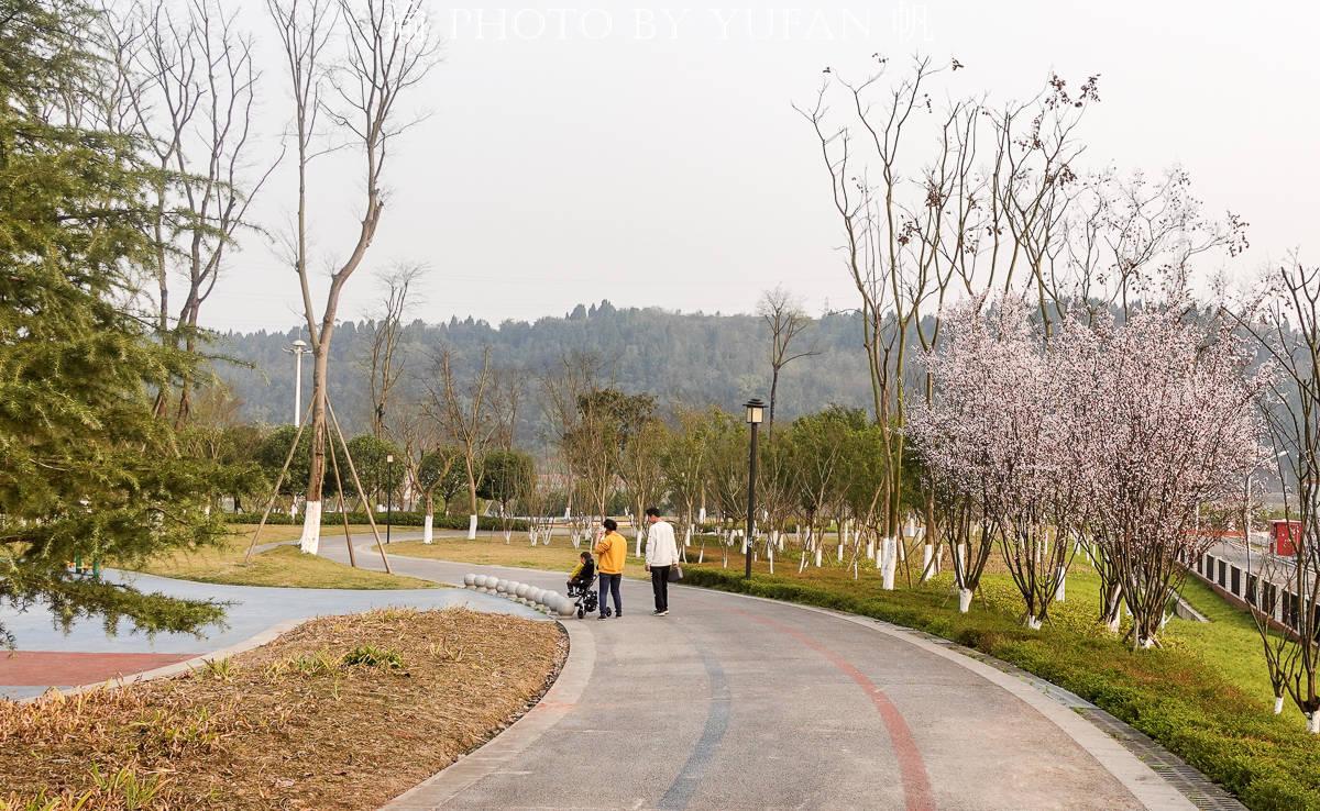 春暖花开的重庆潼南航电公园,景美人少花又美,适合全家来春游