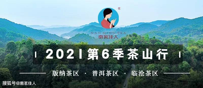 南茗佳人第6季茶山行:3月初就去茶山,真的早吗?