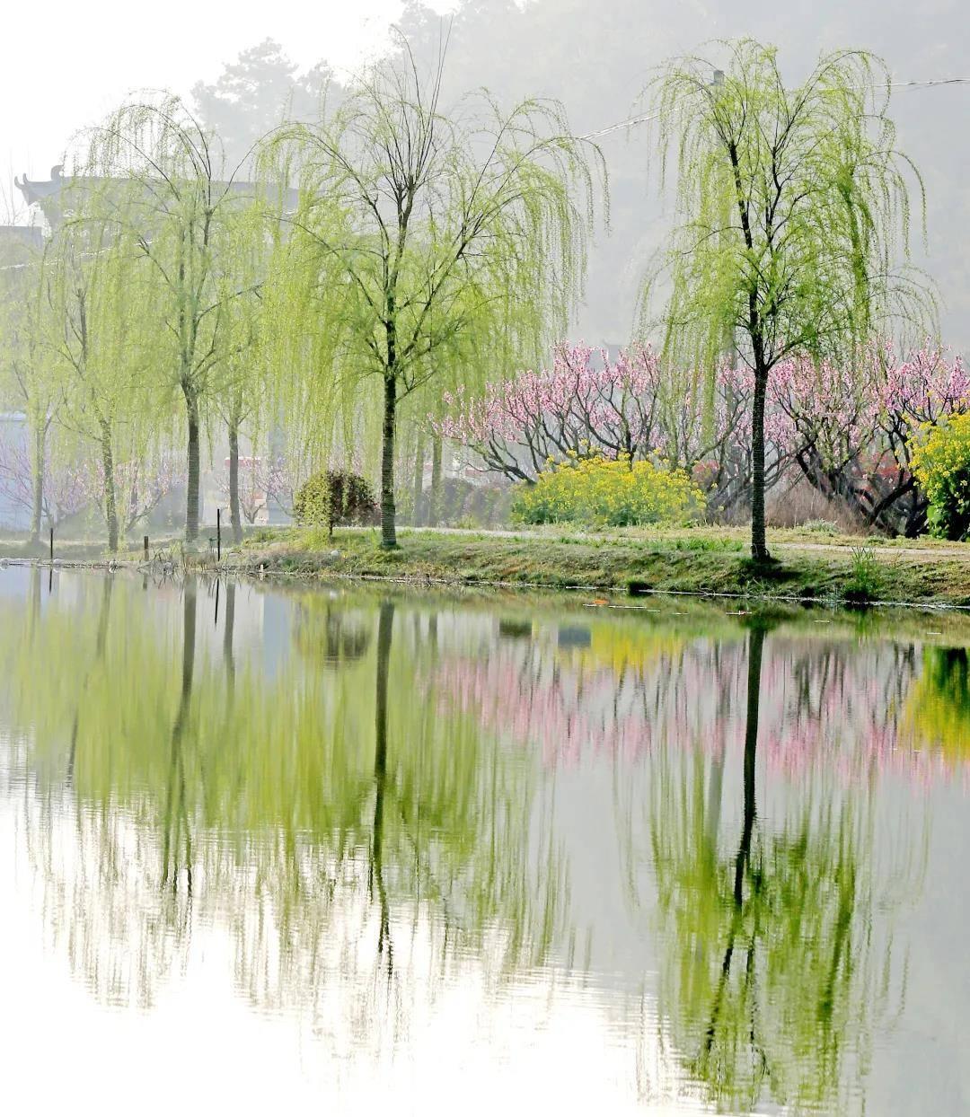 当人间来到三月,安徽这座小城秘境,堪称绝色人间