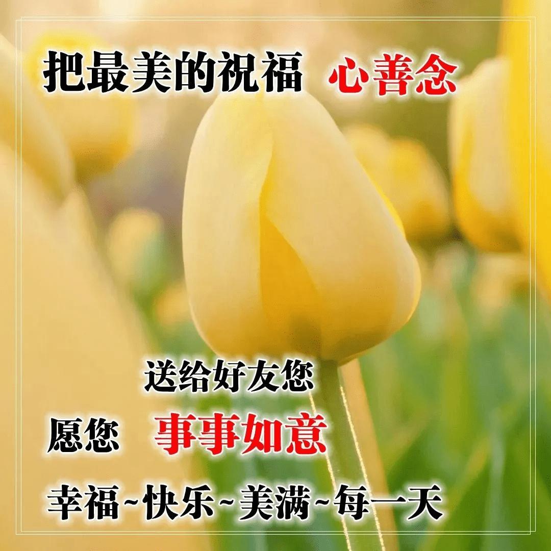 【精华】2020年治愈系早安问候语QQ大汇总30句 高情商早安问候方式