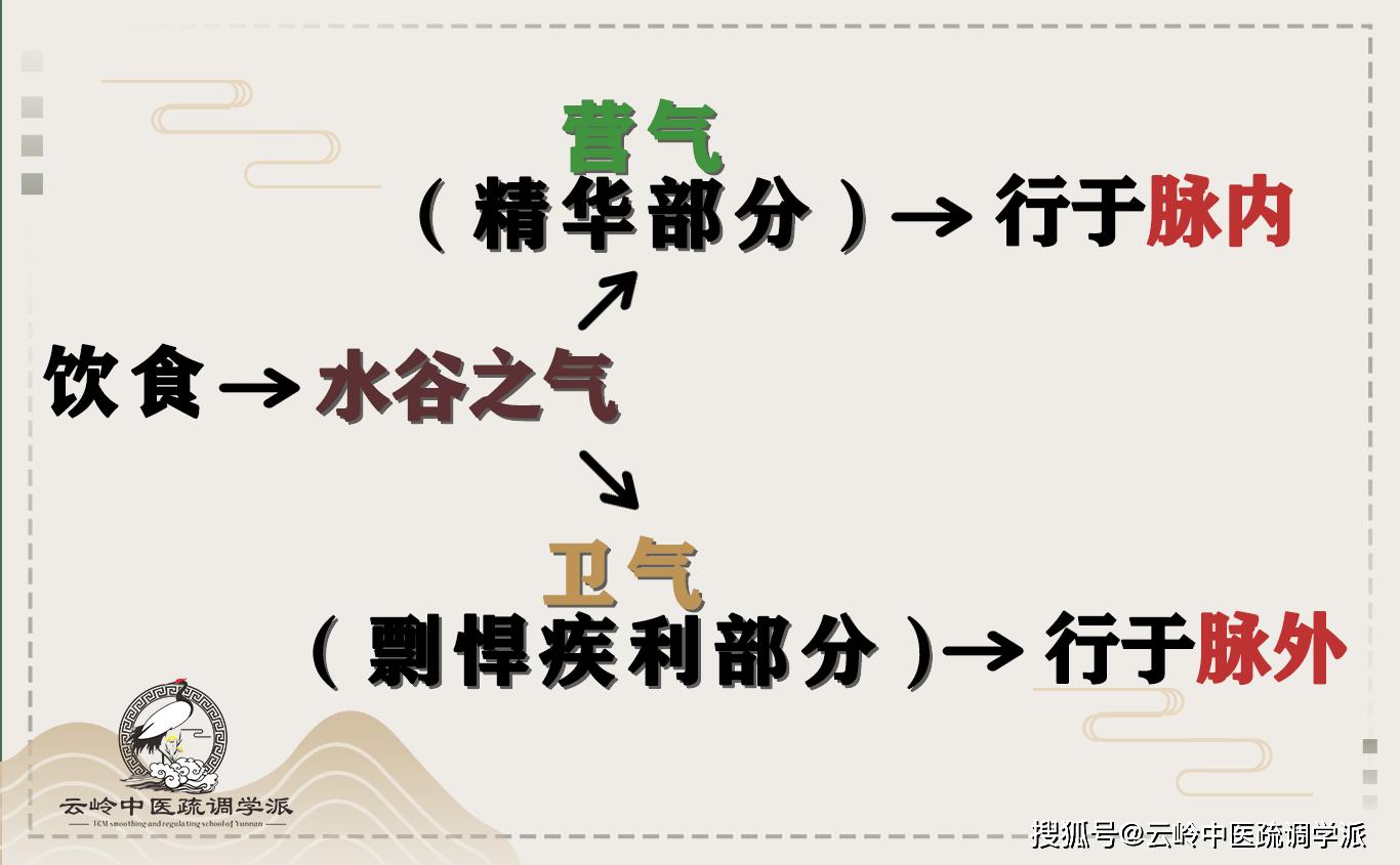 《疏调云讲堂》第五十六期 中医气机理论(十九)