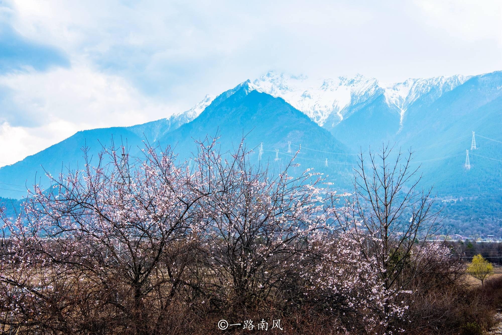 林芝桃花节游人如织,这些景点都很经典,你去过吗?