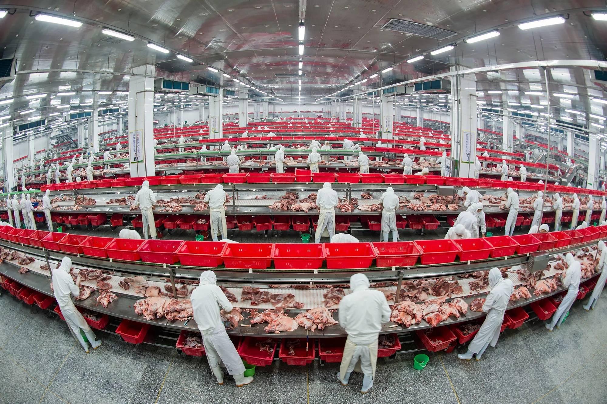 金锣:以创新打造农业产业化典范企业 助力乡村振兴