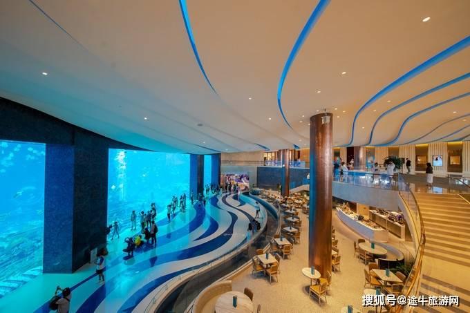冬日来三亚挖掘景区新玩法、感受酒店新体验、分享美食新口感!
