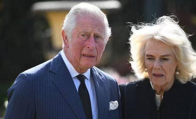 原创             73岁卡米拉成老太婆!穿百褶裙装少女不嫌假,待查尔斯身边真娇俏