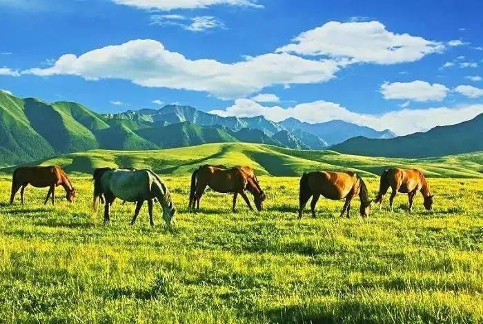 五一不去桂林、不去九寨沟,这才是假期最安逸旅行清单!