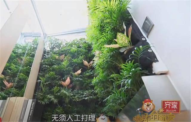 一家四口蜗居北京35㎡半地下房,终日无光,洗菜做饭全在卫生间?  第23张