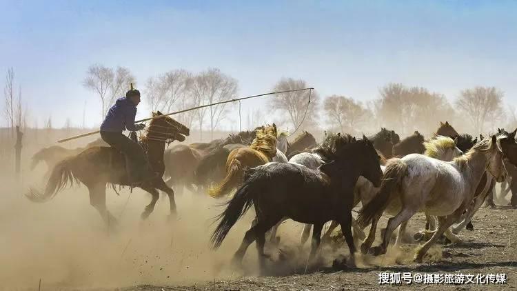 睿道影像|我套马的蒙古族兄弟
