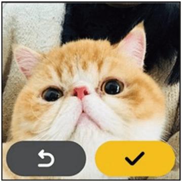 微信还有儿童版?腾讯公开微信儿童版外观设计界面 画面太萌!-家庭网