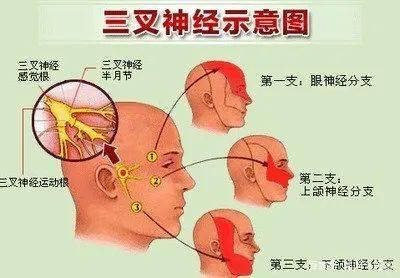 眼皮總是抬不起來?除了重症肌無力,還要考慮可能腦部長了腫瘤!