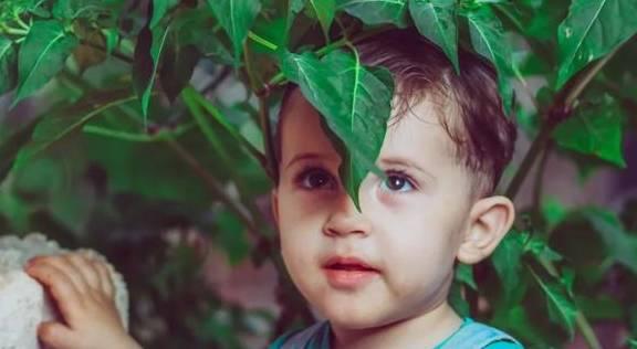 斯坦福教授:4种行为会导致孩子大脑变笨,甚至抑郁!家长请警惕
