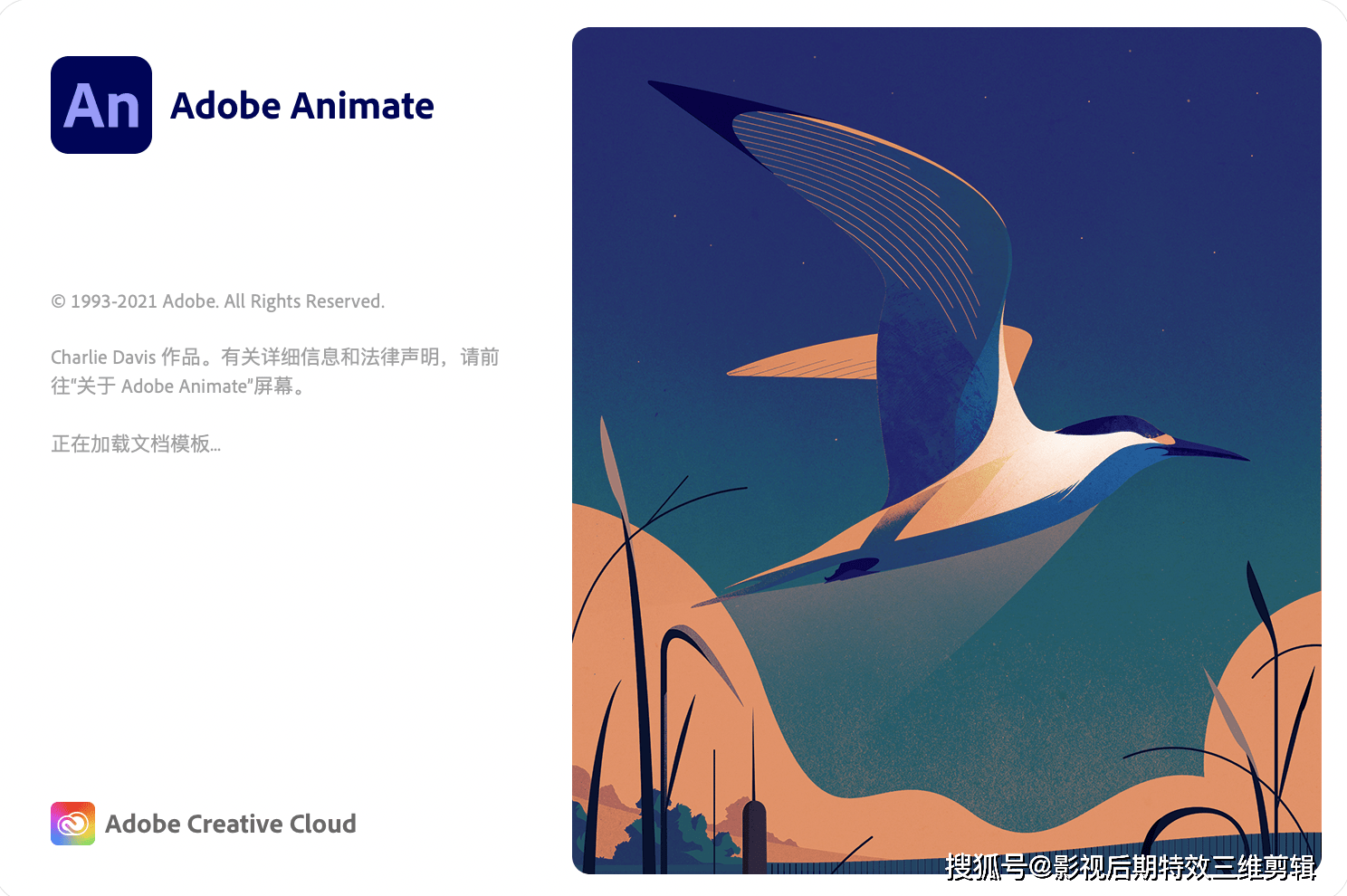 Animate 2021 for Mac(an 2021中文版) v21.0.7中文直裝版