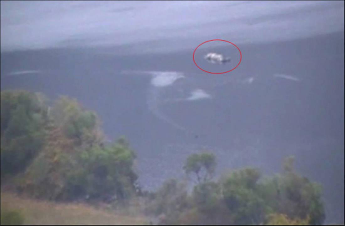 四川雅女湖5次出现水怪,背像鳄鱼身似蟒蛇,真相原来是上百条鲶鱼群