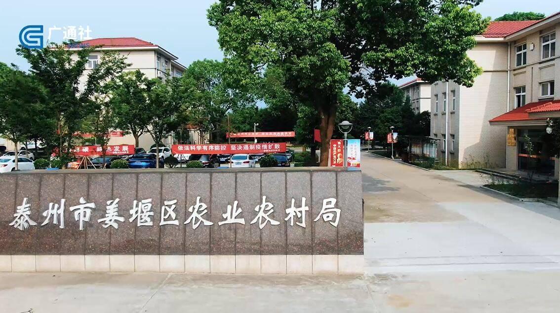 为群众办实事,泰州市姜堰区农业农村局大力实施高标准农田建设