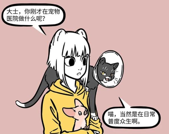 非人哉:大士真的太善良了,化身成猫被绝育了,依然不忘普度世人