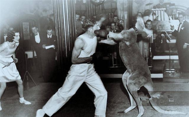 珍贵老照片:萨达姆和女伴嬉戏、激烈的人鼠大战、称重贩卖的黑奴