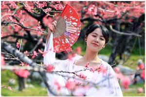 新聊齋|書生京城郊遊,誤入桃花林中,陷進一幅畫中斷了功名