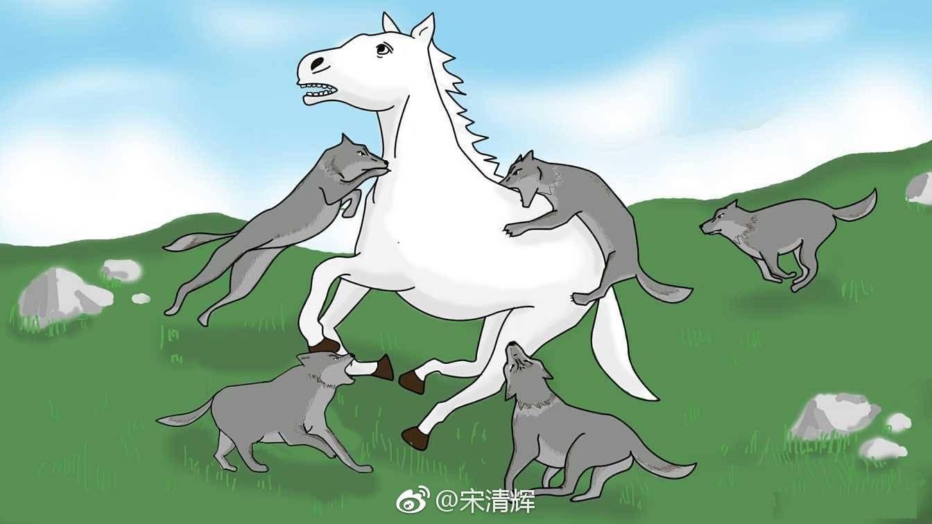 宋清辉:白马股业绩地雷频现 投资者不要被一时的业绩大增所迷惑