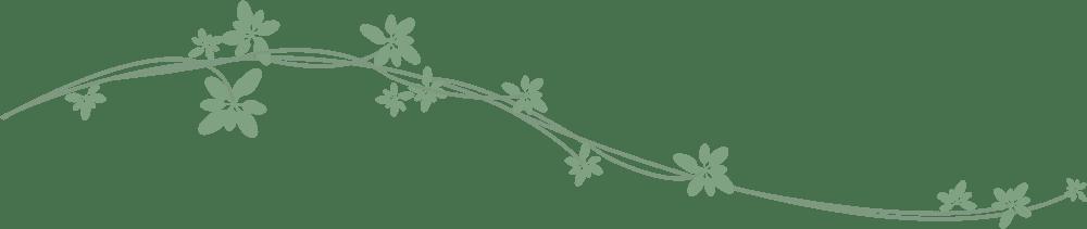 苏州市邮政管理局启动绿色网点和绿色分拨中心标准化建设